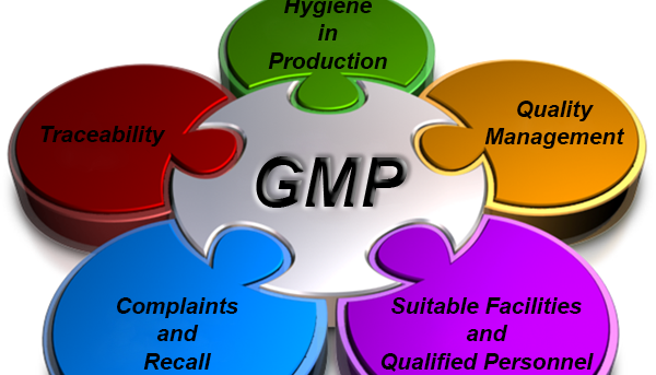 Formación GMP