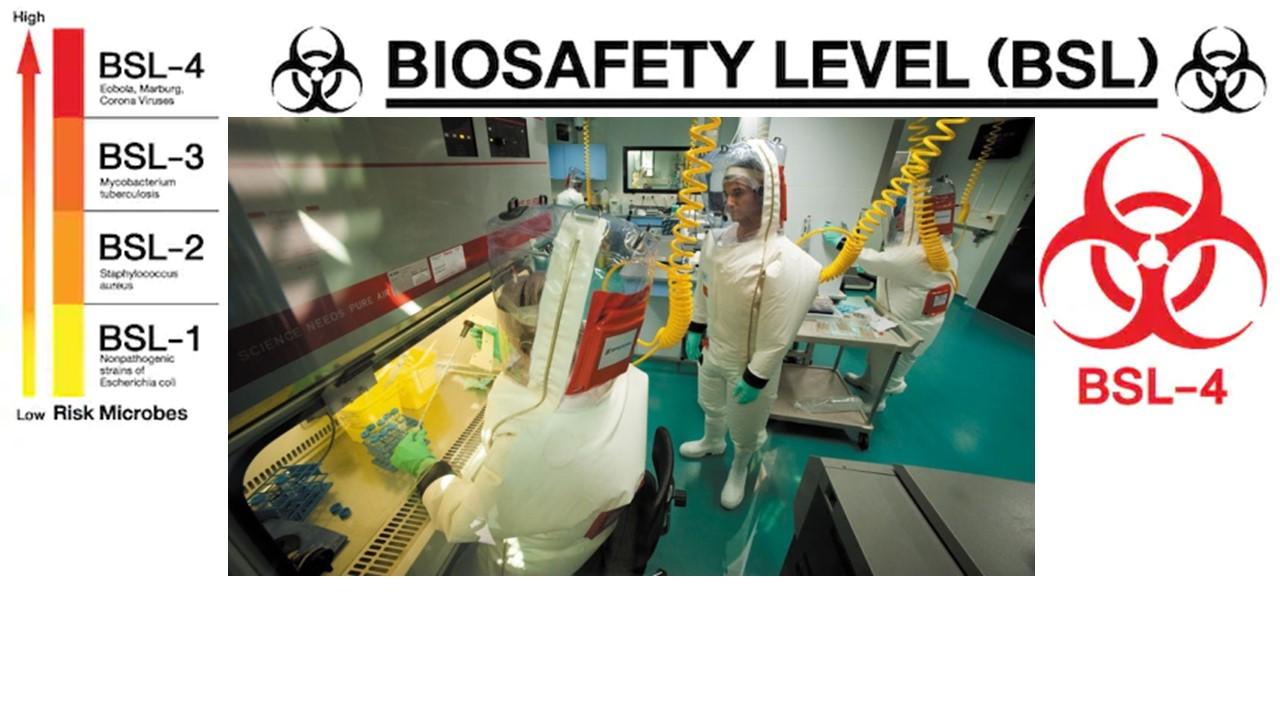 ¿Qué es el nivel de bioseguridad BSL-4?